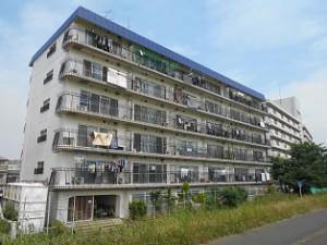 秀和多摩川レジデンス211